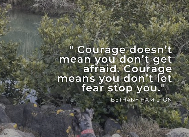 """""""Courage doesn't mean you don't get afraid. Courage means you don't let fear stop you."""" Bethany Hamilton"""